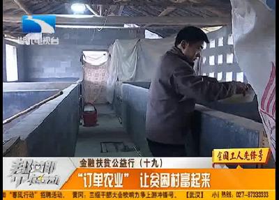 """金融扶贫公益行(十九):""""订单农业""""让贫困村富起来"""