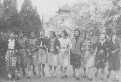 """舍与得:武汉大学的""""樱花账单"""""""