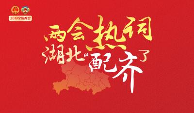 """H5   2019全国两会热词,湖北""""配齐""""了!"""