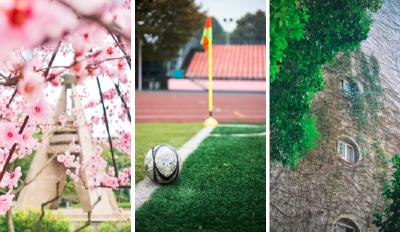 每一张都是壁纸!武汉各大高校的春天,你pick哪儿?