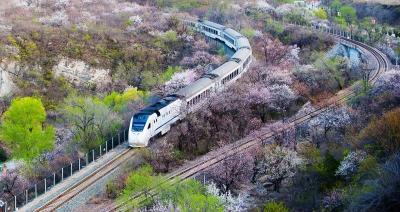 湖北省内游当日就能往返 省外游可坐周末动车!开往春天的列车让你说走就走