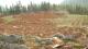 改良土壤发展现代农业 石漠化山村脱贫记