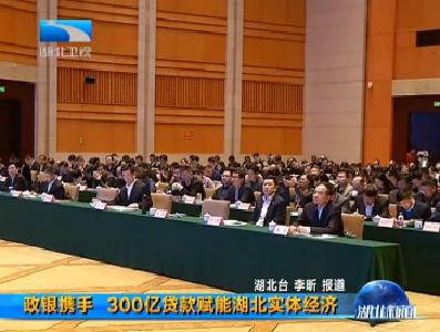 V视丨政银携手 300亿贷款赋能湖北实体经济