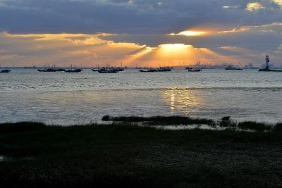 多部门启动联合执法打击长江口水域非法捕捞