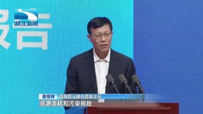 V视 | 专家学者建言长江经济带高质量发展