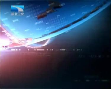 2019年4月7日湖北新闻整段