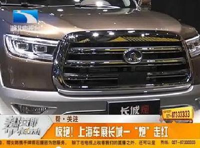 """帮 关注:惊艳!上海车展长城一""""炮""""走红"""