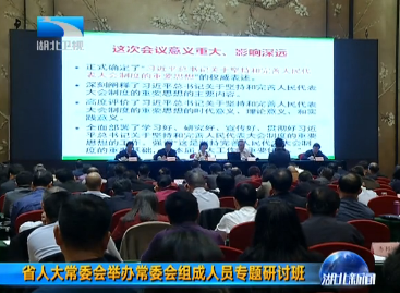 V视 | 湖北省人大常委会举办常委会组成人员专题研讨班