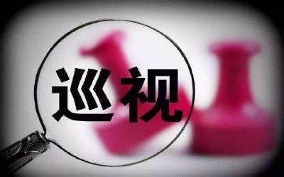 中共湖北省委关于脱贫攻坚专项巡视整改进展情况的通报