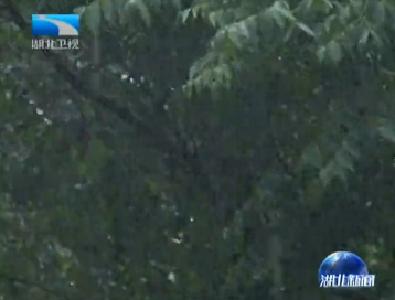 V视 | 湖北大部地区迎大到暴雨