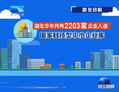 V视 | 湖北今年共有2203家企业入选国家科技型中小企业库
