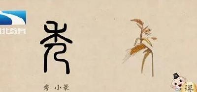 漢字解密|優秀 : 優=智慧高,秀=外形美?