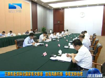 V视 | 王晓东赴京拜会国家有关部委 加强沟通衔接 争取支持合作