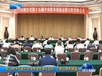 V视|致公党十五届七次中常会在湖北召开 万钢出席并讲话