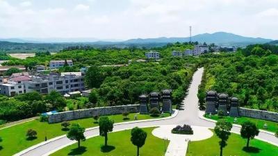 奖50万!安陆市有个乡镇被省里点名,看看你家乡吗