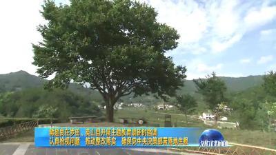 2019年7月12日湖北新闻整段
