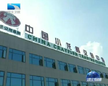 V视 | 李惠东率队在鄂调研 加快推动农村三产融合发展