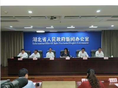 小块头迸发大能量,3至5年内湖北县域GDP将达3.5万亿元
