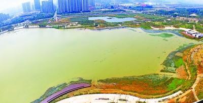 武汉新城区最大公园年内开园