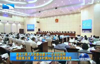 湖北省十三届人大常委会第十一次会议召开 蒋超良主持 审议乡村振兴促进条例草案等