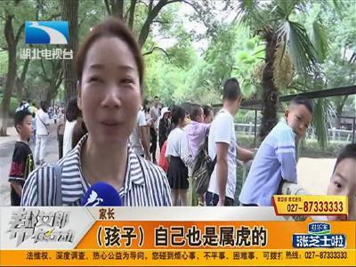 幫·關注:國慶假期過半 武漢動物園游客依舊爆棚