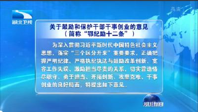 V視丨湖北省紀委監委出臺《關于鼓勵和保護干部干事創業的意見》