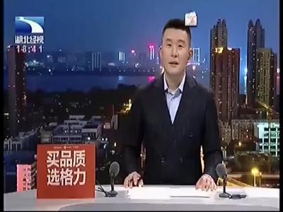 国际军体来汉考察 省直项目竞委会获赞