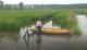 虾稻品种人气高 合作社签万亩示范协议
