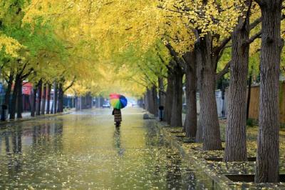 东北内蒙古气温继续降 南方旱区喜雨不断