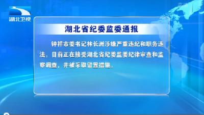 V视 | 湖北省纪委监委通报