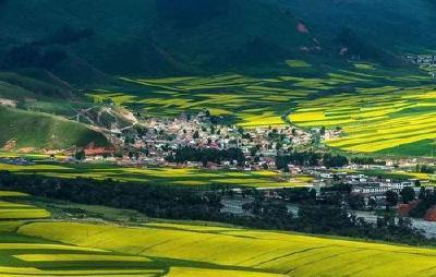 湖北省出台金融服务乡村振兴实施意见 支持有序开展农村承包土地经营权抵押贷款