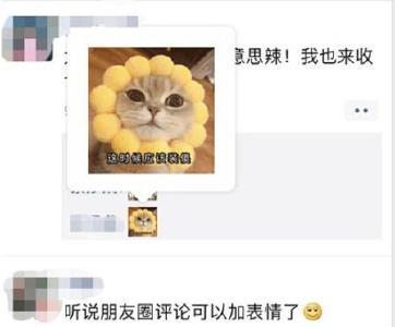 微信暂停朋友圈表情包评论!网友:暗示要开会员?