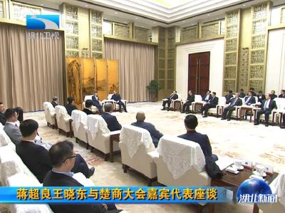 蒋超良王晓东与楚商大会嘉宾代表座谈
