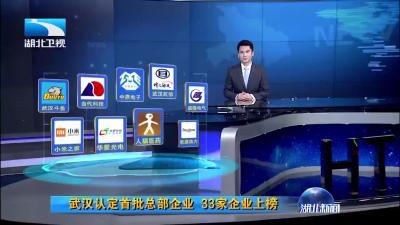 "V视 | 记者观察:武汉发力""首店经济"""