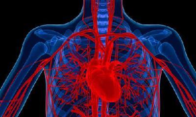 饮食养生汇|心脏的康复治疗一样重要!