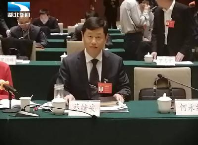 蔡绪安代表:鼓励在汉高校与县市合作办学