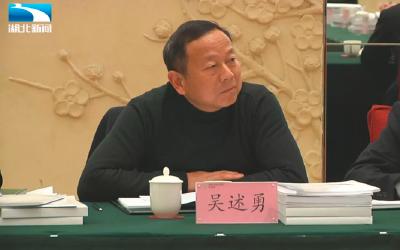 吴述勇代表:建议不断加大农村医疗能力建设的资金、人才支持力度