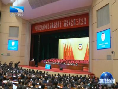 V視丨省政協十二屆三次會議舉行第二次全體會議 聽取委員大會發言
