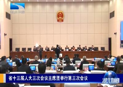湖北省十三届人大三次会议主席团举行第三次会议