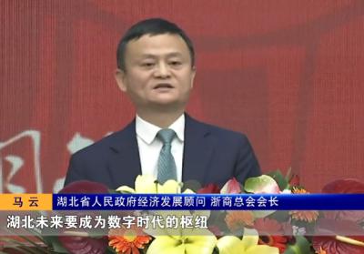 马云这句话是怎样被写入湖北省《政府工作报告》的?