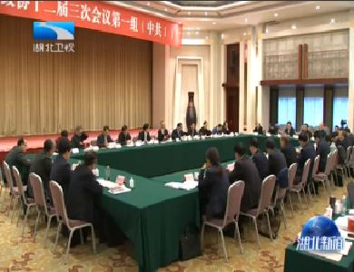 V視丨省政協委員審議常委會工作報告 協商討論《政府工作報告》