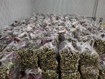 省广电局对口扶贫村合作企业 万余斤菜薹驰援武汉 | 众志成城抗疫情 湖北乡村在行动