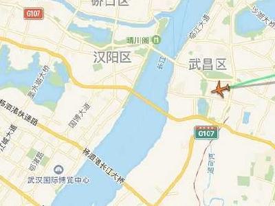 这个特殊航班,带着94名湖北旅客改飞武汉回家了