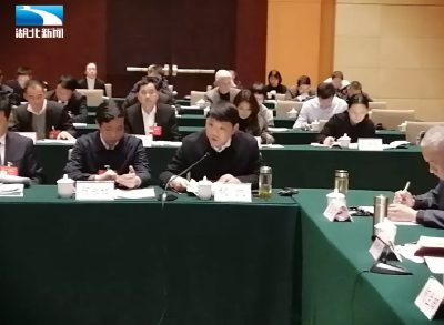 """胡凯代表:加大统筹力度打造""""武汉城市圈升级版"""""""