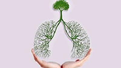 飲食養生匯|肺炎:你所需要了解的真相!