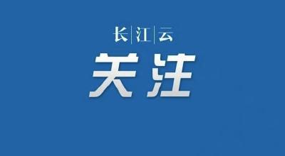 武漢4起在疫情防控工作中不認真履職盡責案件被查處