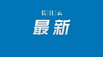 湖北省疫情防控指挥部:进一步加强农村地区疫情防控,做好这13条