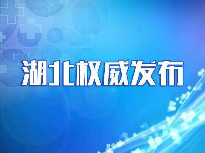 湖北省人民政府关于进一步强化新冠肺炎疫情防控的通告