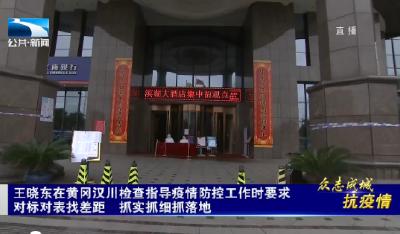V视 | 王晓东在黄冈汉川检查指导疫情防控工作时要求 对标对表找差距 抓实抓细抓落地