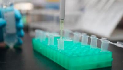 陈焕春:正研究新型疫苗,近期又发现5种药物对病毒有抑制作用